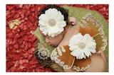 Vlinder Vleugelset luxe bruin + Haarband Fotoshoot _