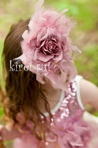Elegant Dusty Pink Rose veren haarband